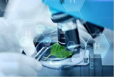 ایران جزو 5 کشور اول آسیا در حوزه زیست فناوری