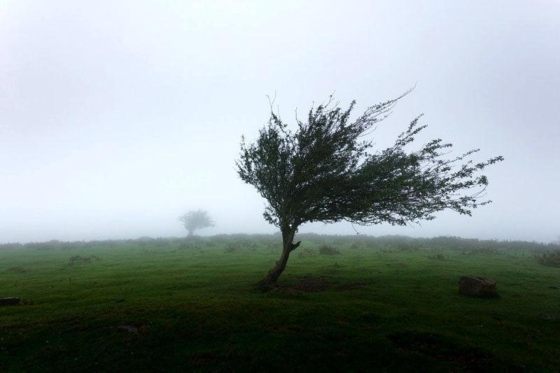 خبرنگاران پیش بینی وزش باد شدید در استان تهران