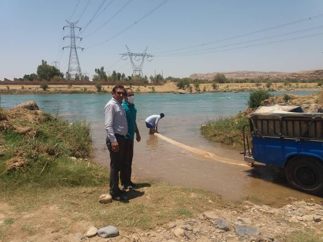 خبرنگاران 450 هزار قطعه ماهی در کارون گتوند رهاسازی شدند
