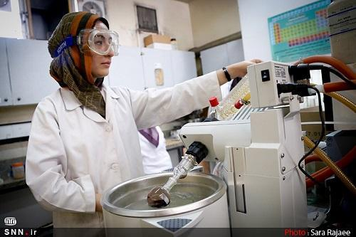 بذر گیاه افوربیا ویگوری به همت پژوهشگران دانشگاه آزاد گرگان تجاری سازی شد