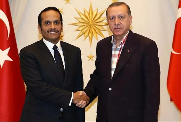 تحولات سوریه و لیبی، محور ملاقات اردوغان و وزیر خارجه قطر